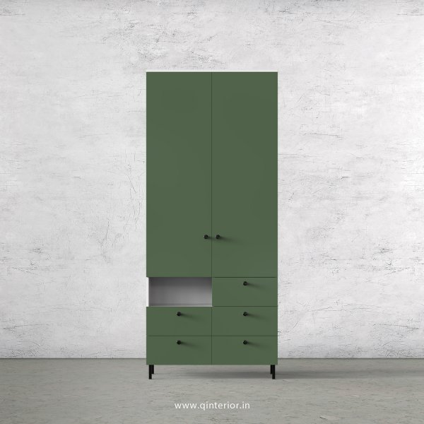 Lambent 2 Door Wardrobe in White and English Ivy Finish – DWRD035 C82