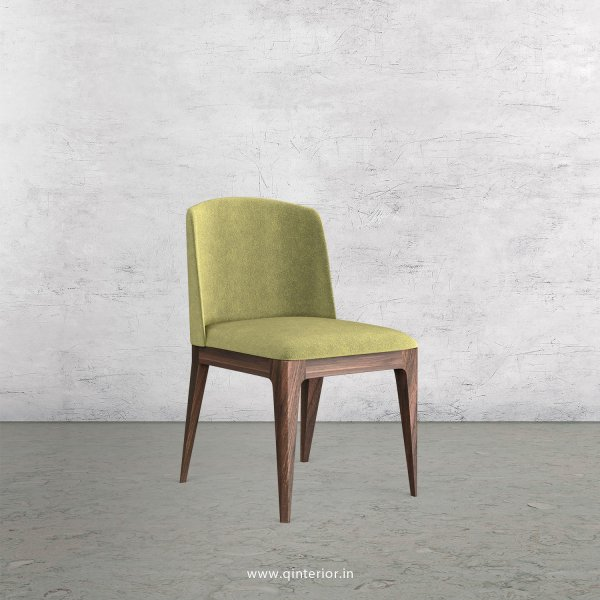 Cario Dining Chair in Velvet Fabric - DCH001 VL04