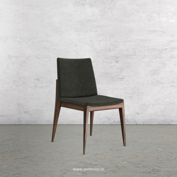 Rio Dining Chair in Velvet Fabric - DCH002 VL07