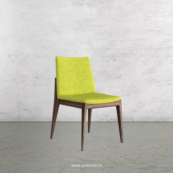 Rio Dining Chair in Velvet Fabric - DCH002 VL10