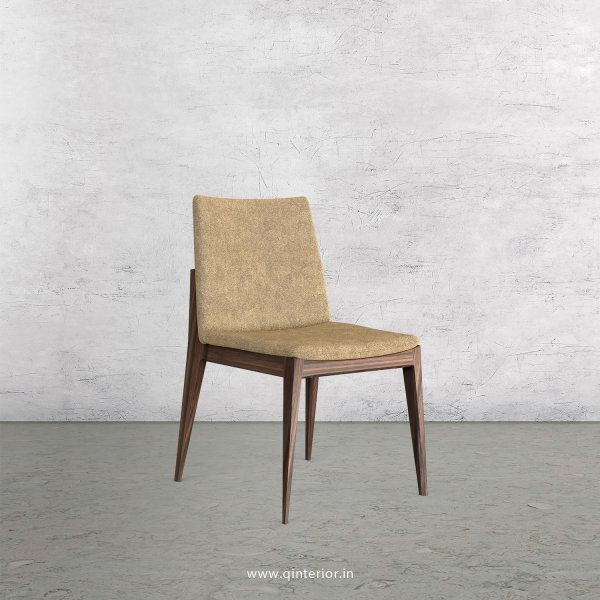 Rio Dining Chair in Velvet Fabric - DCH002 VL11