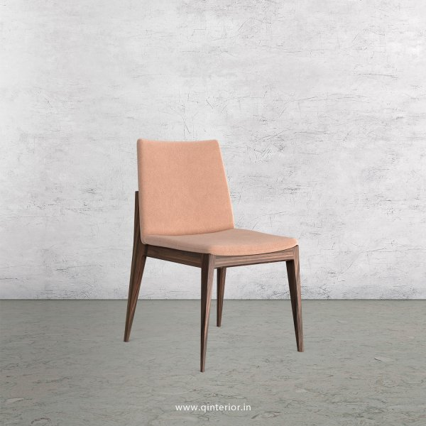 Rio Dining Chair in Velvet Fabric - DCH002 VL16